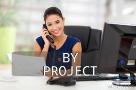 Virtual Assistant in Indonesia 49